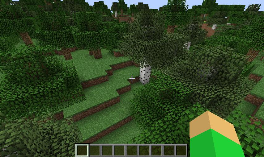 Birch wood seed minecraft project