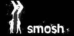 Polish viewers of Smosh Minecraft Blog Post