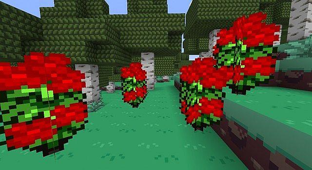 Rosebushes are red flower bushes.