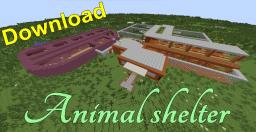 Animal shelter with cats, dogs and other animals