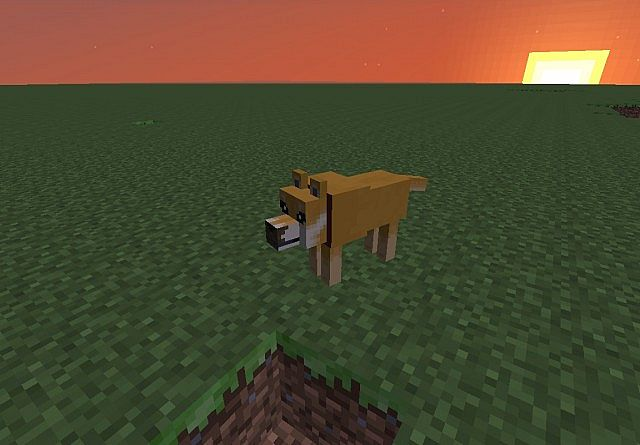 New Doge texture.