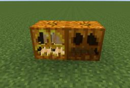 New Snapshot awesome things!