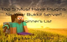 Top 5 Must Have Plugins for Your Bukkit Server!(Beginner's List) Minecraft