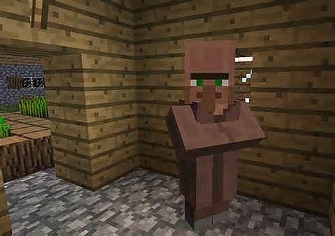 Taking over minecraft 4 villagers taking over minecraft 4 diamonds