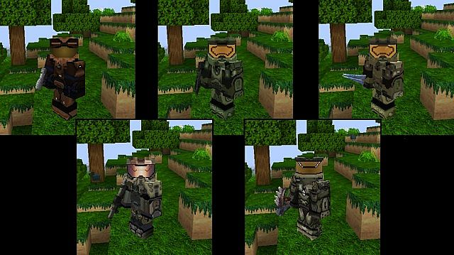 Leather, Gold, Iron, chainmail and Diamond armors