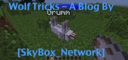 How To Teach Your Wolf Tricks [POPREEL] Minecraft Blog