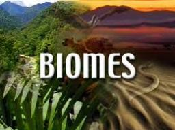 Biome World