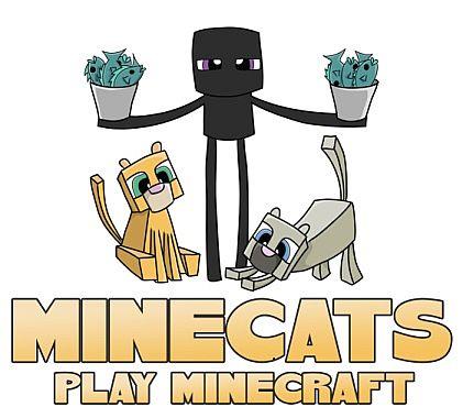 minecats_play_med4256.jpg