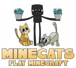 MineCats *Creative*Survival*Skyblock*KitPvP*Vanilla Minecraft Server