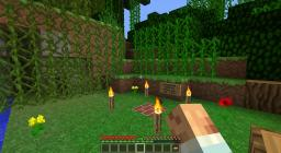 LoneIsland Minecraft