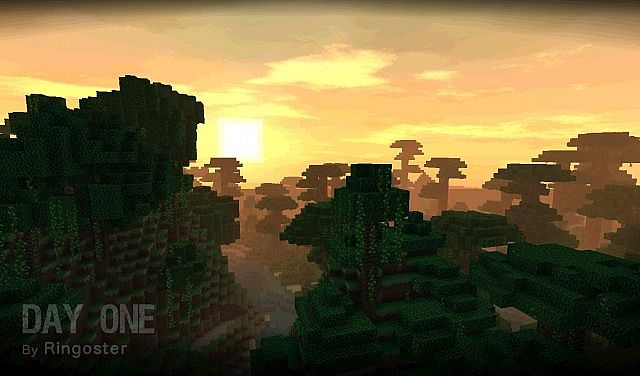 A pretty sunset in the jungle.
