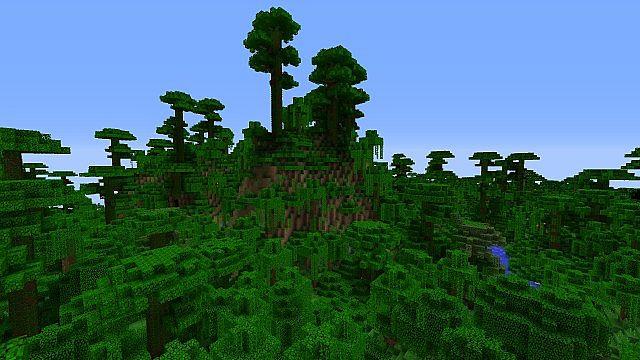 Default Jungle