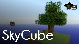 SkyCube - Technical Survival V1.1