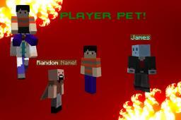 [Plugin] PlayerPet! Players that follow you around! Added prefixes & suffixes! v3.5 [Bukkit/Spigot] Minecraft