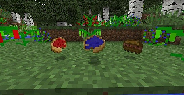 Strawberry pie, blueberry pie, and a beefy sandwich!