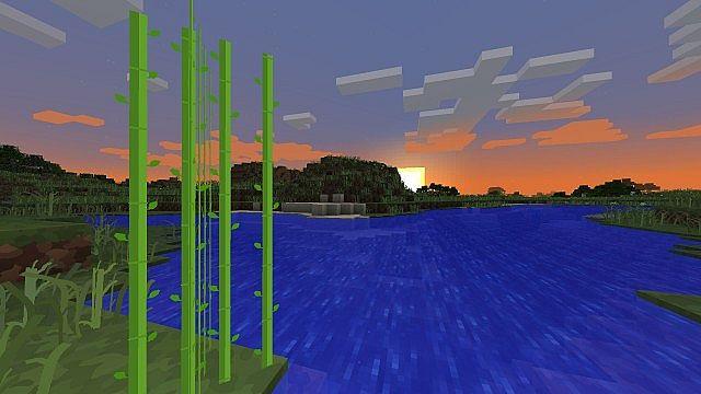 Sugar canes and grass
