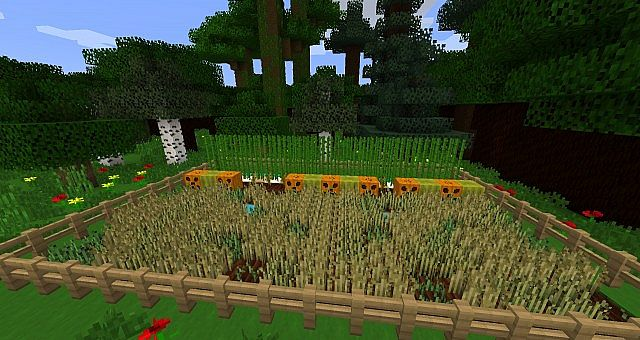 Wheat, reed, pumpkin, watermelon and other greenery.
