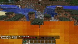 (1.6.4)[SSP/SMP/LAN] Spontaneous Combustion (randomly burst into flames!) Minecraft
