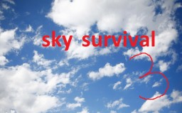 sky survival 3 Minecraft Project