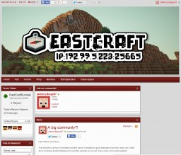 How to make a good-looking free enjin website Minecraft