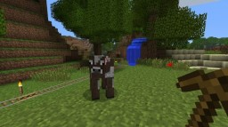 Survival Minecraft Project