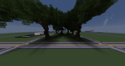 Large oak trees for hunger games map Minecraft