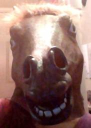 My Amazing Horse Head