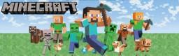 SwagMC Minecraft
