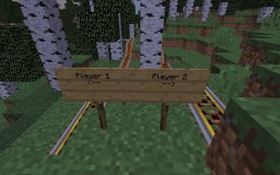 Wild Rollercoaster Minecraft Map & Project