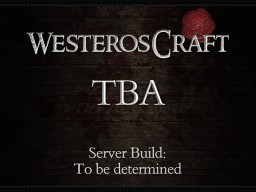 Next Server Build: TBD Minecraft Project