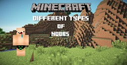 Different types of noobs in Minecraft.