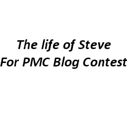 The life of Steve (Contest A Life of Steve) Minecraft Blog
