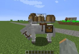 Normal Horse Carries Chest Like Donkey/Mule! Minecraft Blog