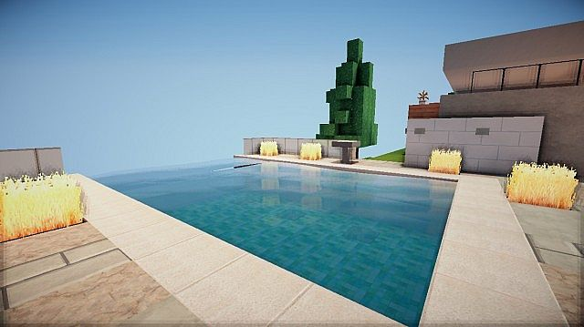 Pavillion 20 Subs Special Minecraft Project