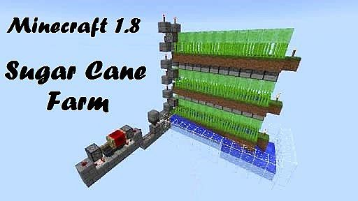 Slime Block Based Automatic Sugar Cane Farm Minecraft Project