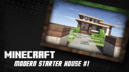 Modern Starter House #1