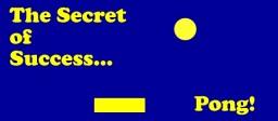 The Secret of Success: Pong Minecraft Blog