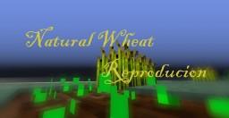 Minecraft Redstone Build - Crop Spreading