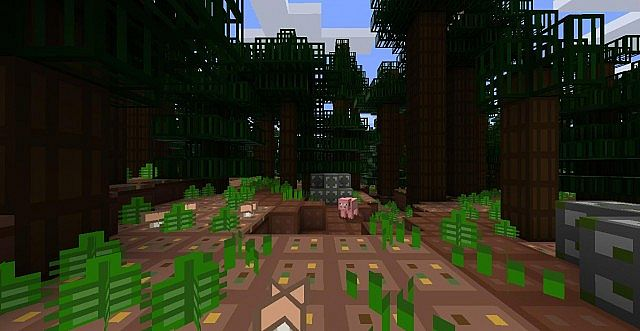 javaw2014 11 0217 59 02 958292845 [1.9.4/1.8.9] [8x] REN Texture Pack Download