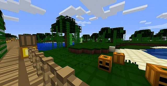 javaw2014 11 0218 05 02 608292843 [1.9.4/1.8.9] [8x] REN Texture Pack Download