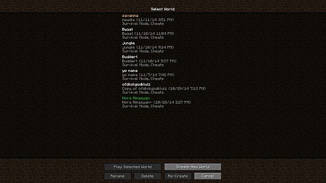 how to change your screen name in minecraft