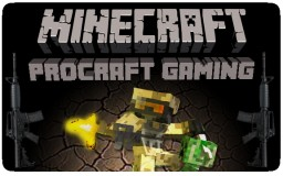 ★ PROCRAFT - NO RULES! Minecraft Server