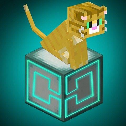 Image titled Make a Cracked Minecraft Server Step 9