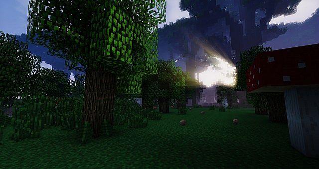 Mushroom woodland