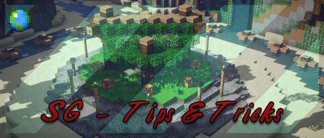 Minecraft Creative Tips Tricks: Tips & Tricks Minecraft Blog