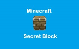 "Minecraft's ""HIDDEN"" Blocks 1!"