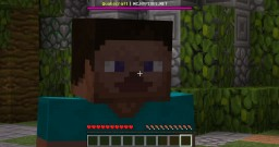 Steve's Life (A Life of a Steve Contest) Minecraft Blog