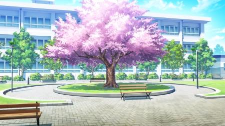 sakura high school quad Anime School Front