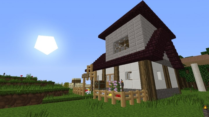 Big Village House 1 Minecraft Map