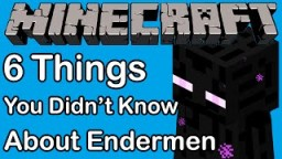 Thins you didn't know about the Endermen Minecraft Blog